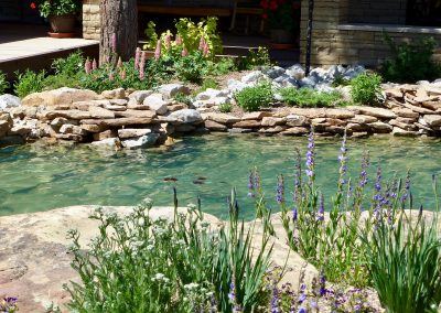 landscape design with stream bed