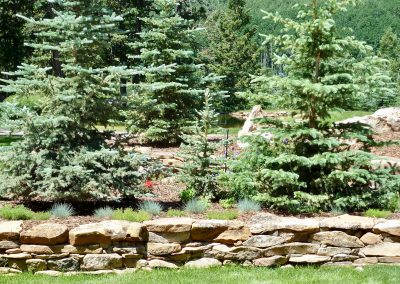 retaining wall with tree planting